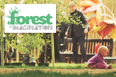 Forest of Imagination